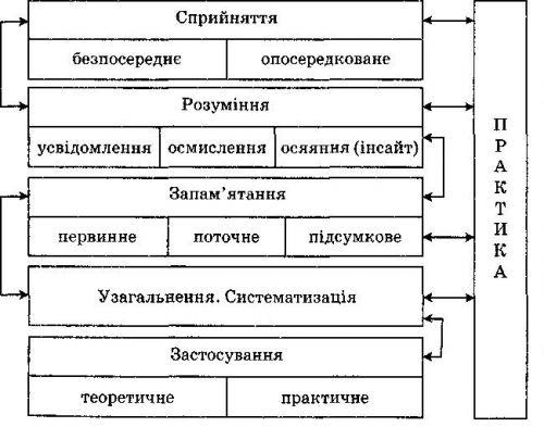 Этапы процесса учения